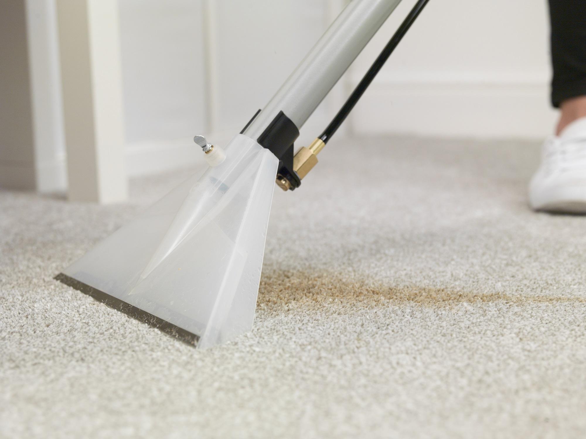 odkurzacz piorący dywany